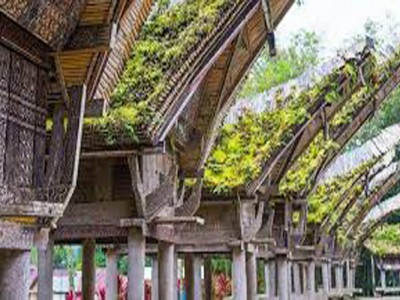 TORAJA TRADITIONAL HOUSES