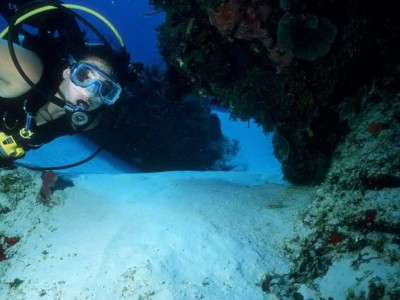 01. PHOTo DIVING